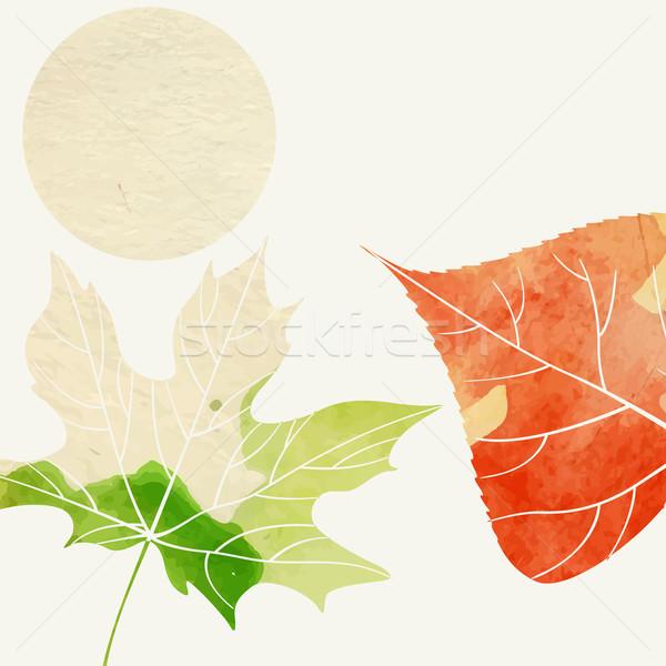 Eenvoudige najaar eps 10 textuur bos Stockfoto © HelenStock
