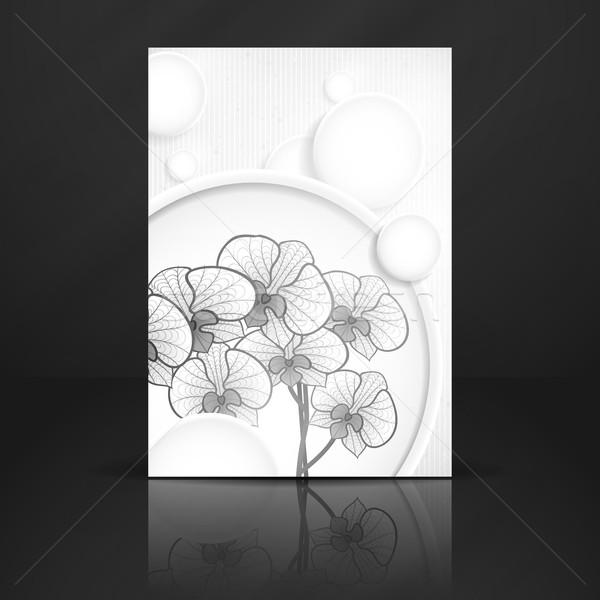 Soyut beyaz kâğıt circles eps 10 Stok fotoğraf © HelenStock