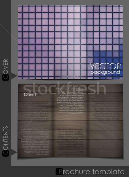 Folheto modelo projeto eps 10 fundo Foto stock © HelenStock