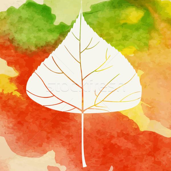 Creativo autunno eps 10 texture foresta Foto d'archivio © HelenStock