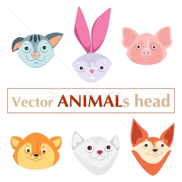 Animais conjunto cabeça Foto stock © heliburcka