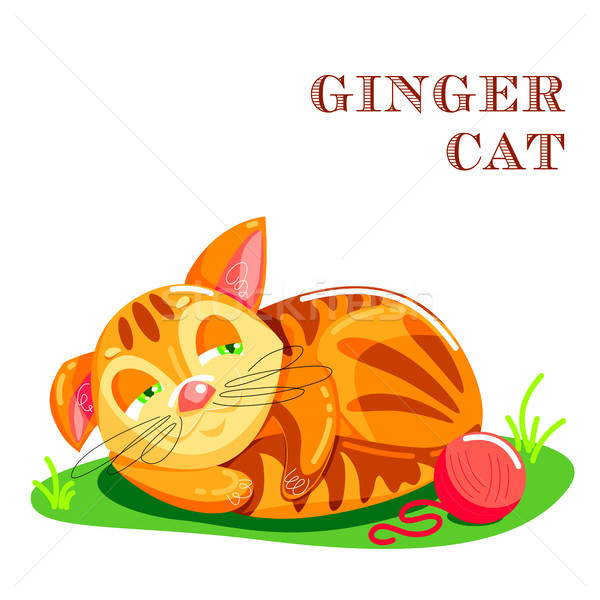 Educational flashcard with cat on the grass Stock photo © heliburcka