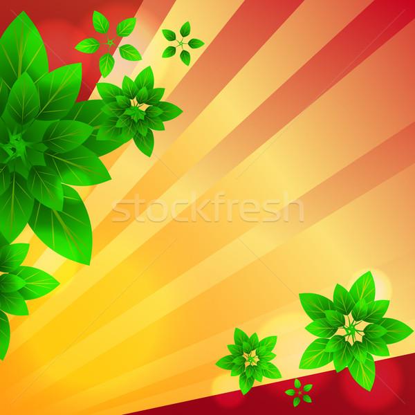 Stralen bladeren wenskaart kleurrijk bloem abstract Stockfoto © heliburcka