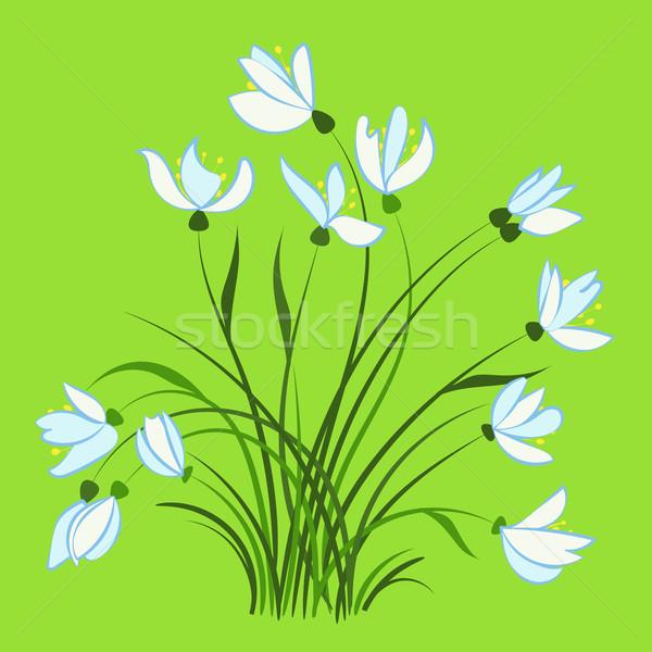 Eerste lentebloemen mooie vector natuur Stockfoto © heliburcka