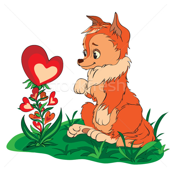 Róka néz virág piros szívek tavasz Stock fotó © heliburcka
