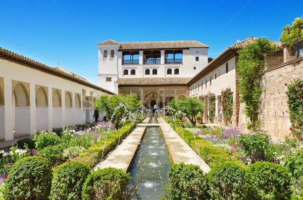 фонтан садов Альгамбра дворец Испания небе Сток-фото © HERRAEZ