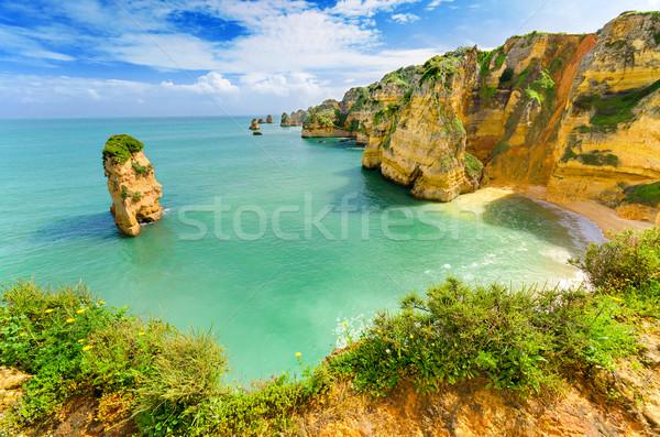 のどかな ビーチ 風景 ポルトガル 空 自然 ストックフォト © HERRAEZ
