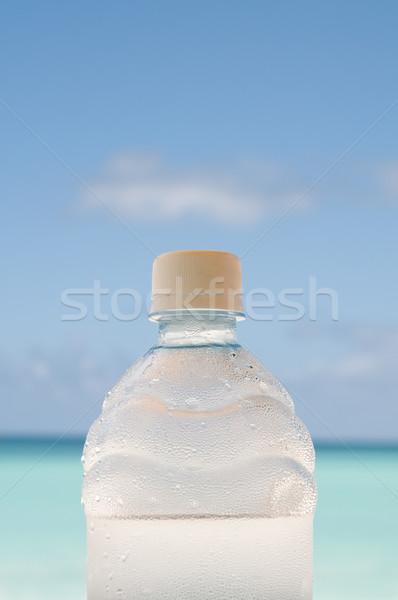 Koud fles water strand gedekt druppels Stockfoto © HerrBullermann