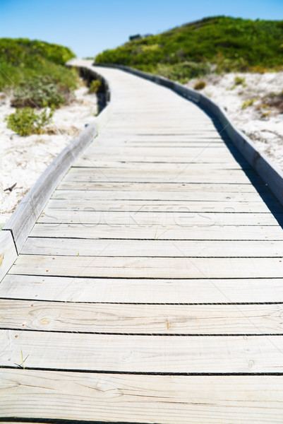 Wooden pathway Stock photo © HerrBullermann
