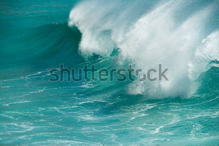 Turquoise ocean wave breaking Stock photo © HerrBullermann