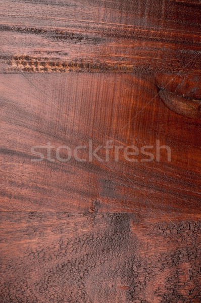 Tropical Wood texture Stock photo © HerrBullermann