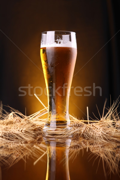 Szkła piwa jęczmień kłosie wysoki Zdjęcia stock © hiddenhallow