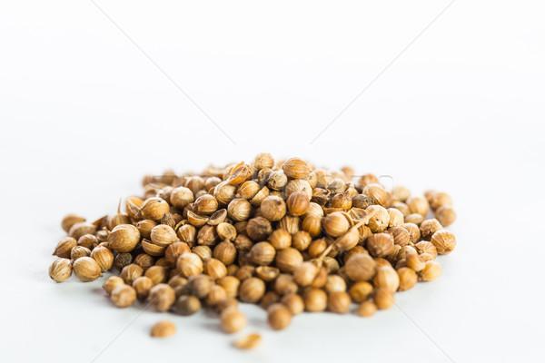 Coriandre semences isolé blanche couleur objets Photo stock © hin255