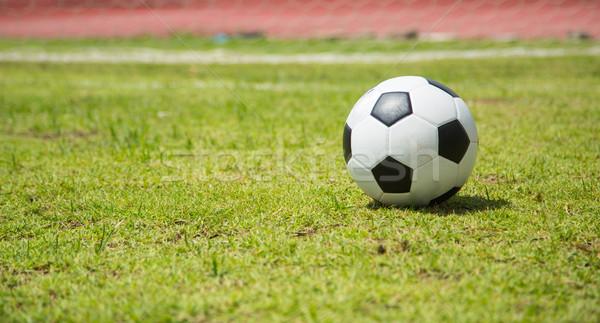 サッカーボール 目標 スポーツ サッカー フィールド 緑 ストックフォト © hin255