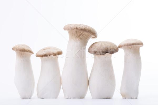 Grzyby pięć sztuk odizolowany biały zdrowia Zdjęcia stock © hin255