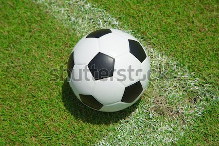 Soccer ball in the goal  Stock photo © hin255