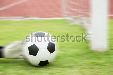 Soccer goalkeeper hands save goal Stock photo © hin255