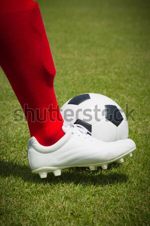 プレーヤー ボール 孤立した 白 サッカー スポーツ ストックフォト © hin255
