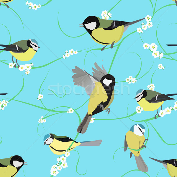 titmouse pattern with flowers Stock photo © Hipatia