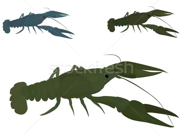 green crayfish Stock photo © Hipatia