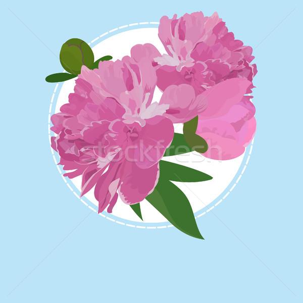 Biglietto d'auguri fiore può usato invito wedding Foto d'archivio © Hipatia