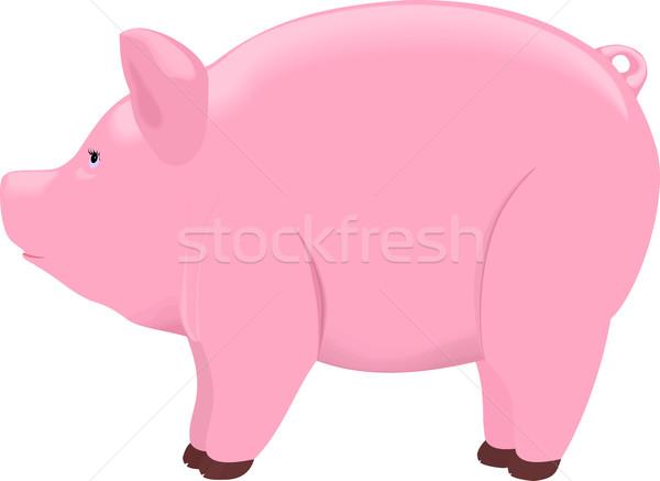 Isolato rosa bianco soldi Foto d'archivio © Hipatia