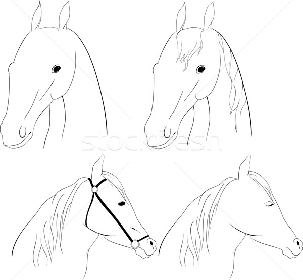 馬 頭 セット グラフィック 白 芸術 ストックフォト © Hipatia