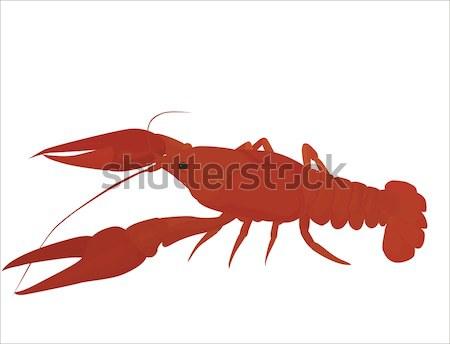 Rouge isolé rivière bouilli poissons manger Photo stock © Hipatia