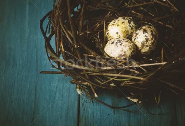 Jaj gniazdo niebieski tabeli tekstury Zdjęcia stock © hitdelight