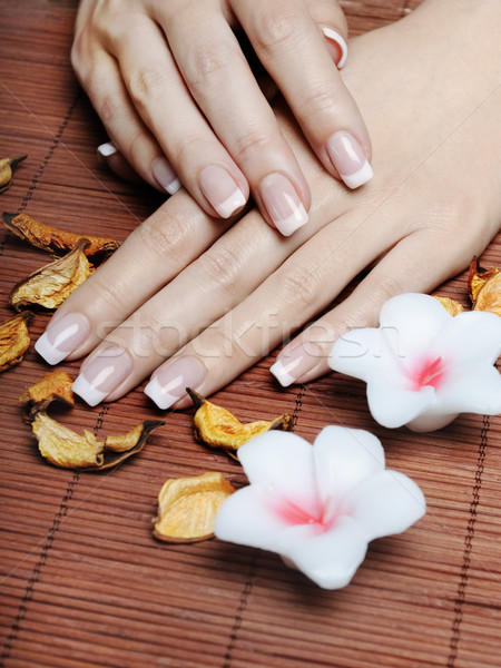 French Manicure Stock photo © hitdelight