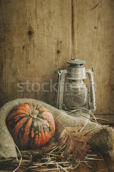 Halloween Compositin Stock photo © hitdelight