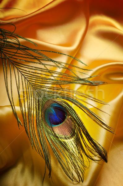 孔雀 羽毛 黄色 シルク ファッション 抽象的な ストックフォト © hitdelight