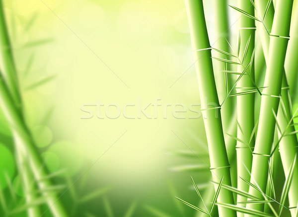 Photo stock: Bambou · illustration · arbre · design · feuille