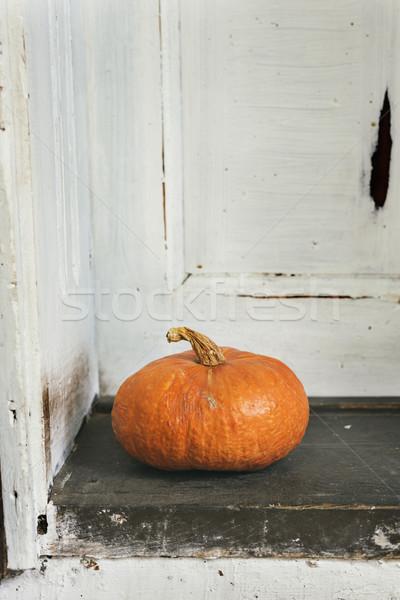 Pumpkin Stock photo © hitdelight