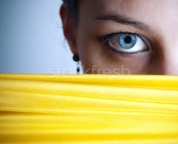 Blue eye Stock photo © hitdelight