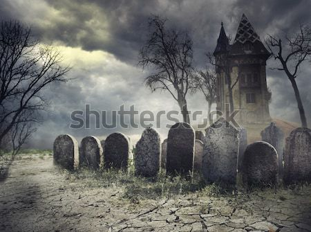 Crow on the tombstone Stock photo © hitdelight