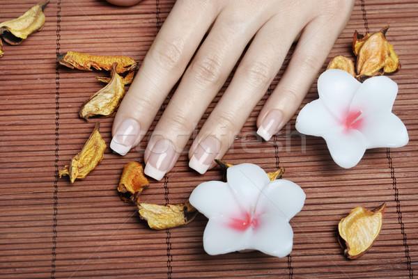 Francia manikűr női kezek lány kéz szépség Stock fotó © hitdelight