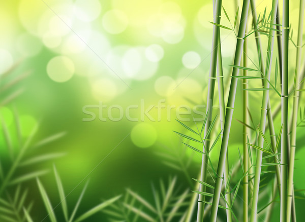 Bambù illustrazione albero design foglia sfondo Foto d'archivio © hitdelight