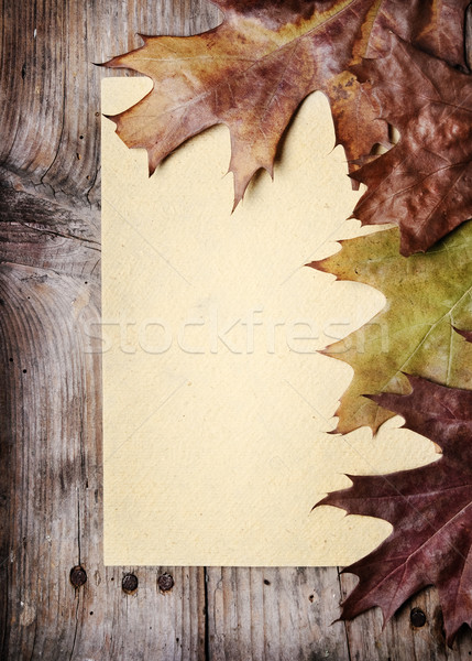 Vintage Paper and Autumn Leaves Stock photo © hitdelight