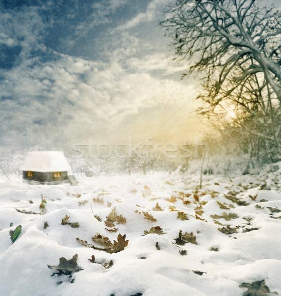Winter Stock photo © hitdelight