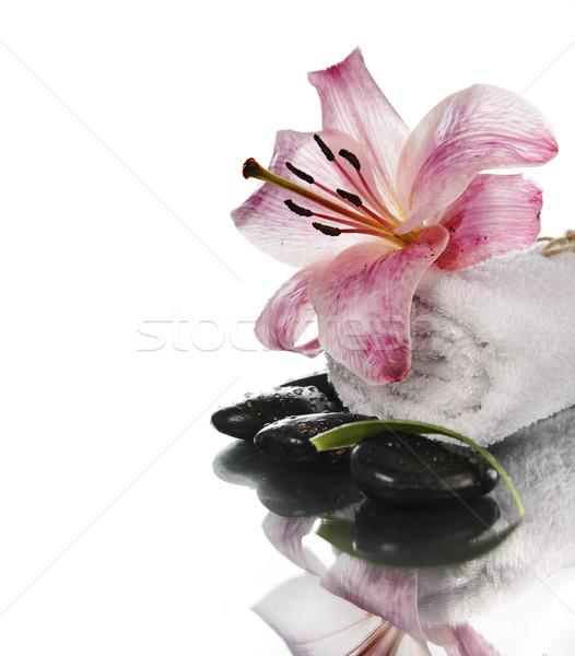 Spa giglio fiore zen pietre bianco Foto d'archivio © hitdelight