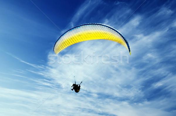 Repülőgép ugrás jókedv sebesség erő szél Stock fotó © hitdelight