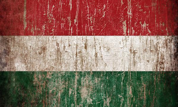 Bayrak Macaristan doku ahşap arka plan Stok fotoğraf © hitdelight