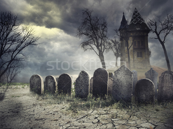 Haunted House Stock photo © hitdelight