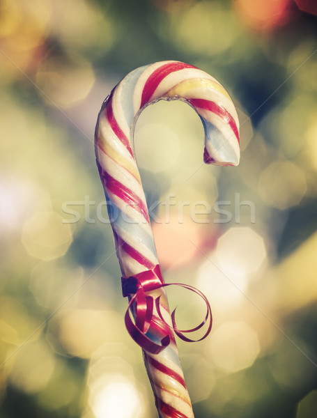 Candy Cane Stock photo © hitdelight