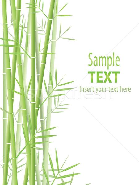 Bambu vetor árvore projeto folha fundo Foto stock © hitdelight