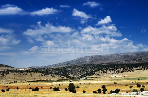 Turkish Landscape Stock photo © hitdelight