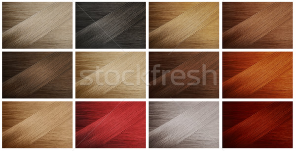 Hair Samples Stock photo © hitdelight