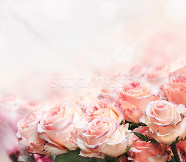 Roses Bouquet Stock photo © hitdelight