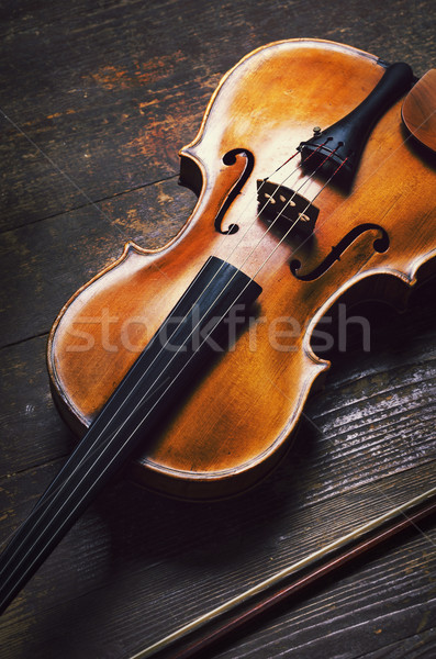 Viola Stock photo © hitdelight